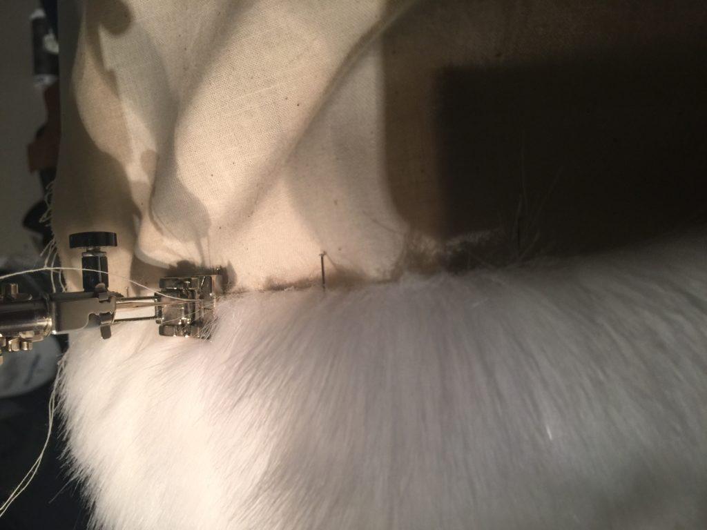 Daenerys white furcoat WIP 044